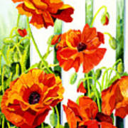 Spring Poppies Art Print by Janis Grau