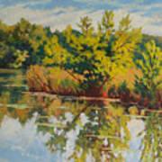 Spring Reflection Art Print