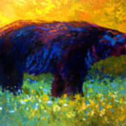 Spring Stroll - Black Bear Art Print