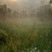 Spring Sunrise In The Valley Art Print by Dale Kincaid