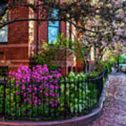 Spring Time In The City Art Print