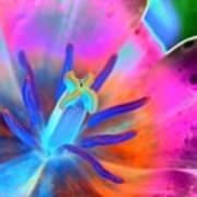 Spring Tulips - Photopower 3127 Art Print