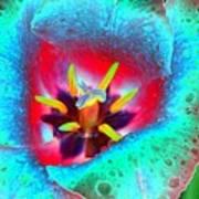 Spring Tulips - Photopower 3131 Art Print