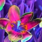 Spring Tulips - Photopower 3154 Art Print