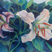 Spring Vegitation Art Print