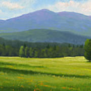 Spring Vista Art Print