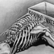 Spring Water Art Print