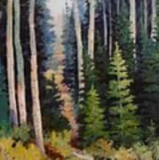 Spring Wood Path Art Print