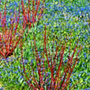 Springtime Impression Art Print