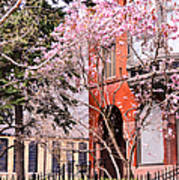 Springtime In Lincoln Park Art Print