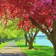 Springtime In The Park Art Print