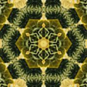 Springtime  Mandala Art Print