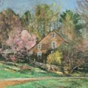 Springtime On Longhill Art Print