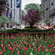 Springtime On Park Avenue Art Print