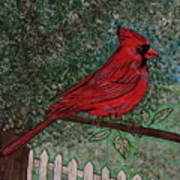 Springtime Red Cardinal Art Print