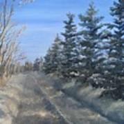 Spruce Trees Along A Snowy Road  Art Print