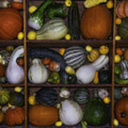 Squash And Gourds In Compartments Art Print