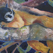 Squirrel Monkey Revised Art Print