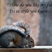 Squirrel With Fur Collar Art Print