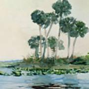 St John's River Florida Art Print