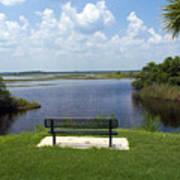 St Johns River In Florida Art Print