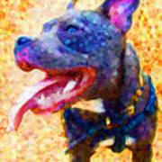 Staffordshire Bull Terrier In Oil Art Print by Michael Tompsett