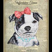 Staffordshire Terrier-jp3857 Art Print