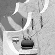 Stairway Plant Art Print