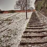 Stairway To Spring Art Print