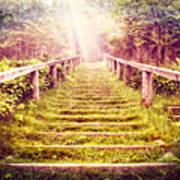 Stairway To The Garden Art Print