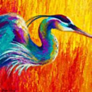 Stalking The Marsh - Great Blue Heron Art Print