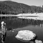 Standing In Comanche Reservoir Art Print