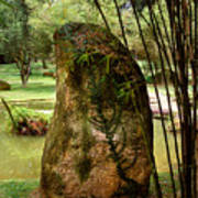 Standing Stone With Fern And Bamboo 19a Art Print