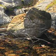 Stanislaus Rocks Spring Art Print