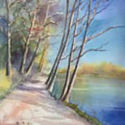 Stanley Park Art Print
