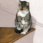 Stanzie Cat Art Print