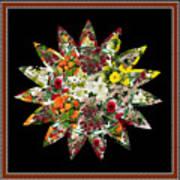 Star Flower Bouquet Creation By Navinjoshi At Fineartamerica.om Graphics Art   Elegant Interior Deco Art Print