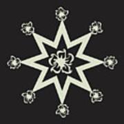 Star Flower - Ebony And Ivory Art Print