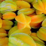 Star Fruit Art Print