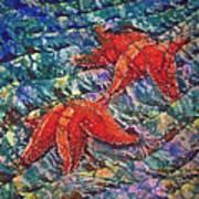 Starfish 2 Art Print