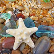 Starfish Art Prints Star Fish Seaglass Sea Glass Art Print