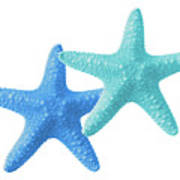 Starfish Blue And Turquoise On White Art Print