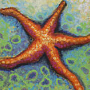 Starfish Art Print