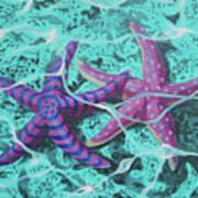 Starfish In Love Art Print