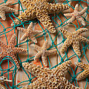 Starfish In Net Print by Garry Gay