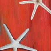 Starfish On Red Art Print