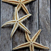 Starfishes In Wooden Art Print