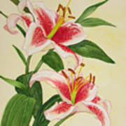 Stargazer Lilies - Watercolor Art Print