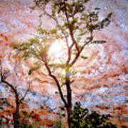 Starry Night Fantasy, Tree Silhouette Art Print