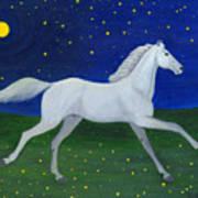 Starry Night In August Art Print